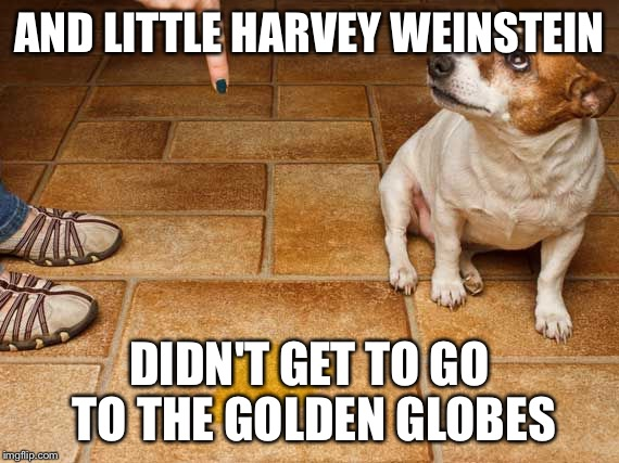 Look at the mess you've made | AND LITTLE HARVEY WEINSTEIN DIDN'T GET TO GO TO THE GOLDEN GLOBES | image tagged in dog in trouble,harvey weinstein,golden globes | made w/ Imgflip meme maker