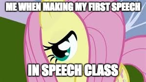 I'm taking a speech class and we are already discussing our speeches for next week! | ME WHEN MAKING MY FIRST SPEECH IN SPEECH CLASS | image tagged in shy fluttershy,memes,speech | made w/ Imgflip meme maker