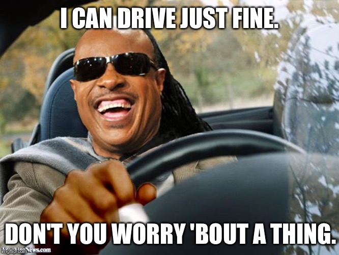 I CAN DRIVE JUST FINE. DON'T YOU WORRY 'BOUT A THING. | image tagged in stevie wonder driving | made w/ Imgflip meme maker