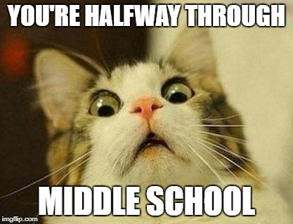YOU'RE HALFWAY THROUGH MIDDLE SCHOOL | image tagged in shocked cat | made w/ Imgflip meme maker