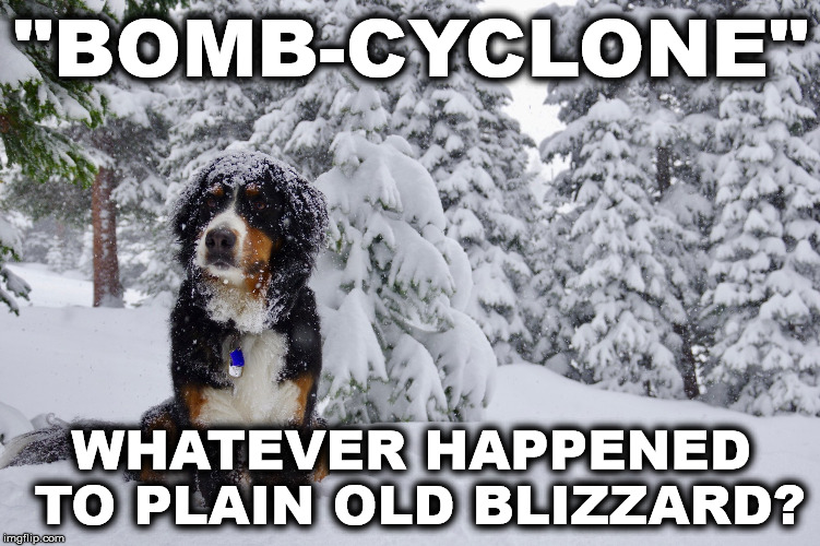 """BOMB-CYCLONE"" WHATEVER HAPPENED TO PLAIN OLD BLIZZARD? 