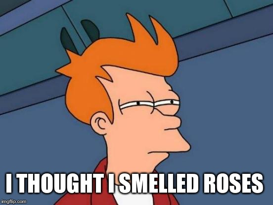 Futurama Fry Meme | I THOUGHT I SMELLED ROSES | image tagged in memes,futurama fry | made w/ Imgflip meme maker