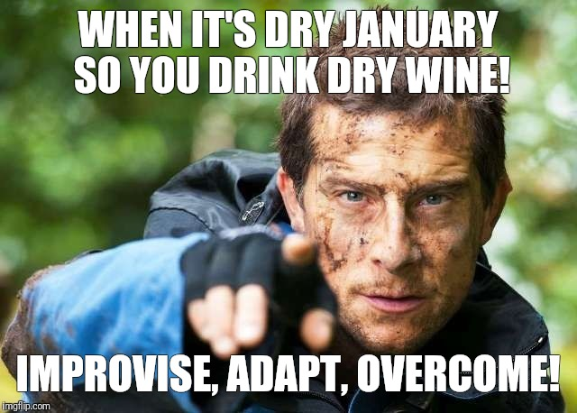 WHEN IT'S DRY JANUARY SO YOU DRINK DRY WINE! IMPROVISE, ADAPT, OVERCOME! | image tagged in memes,funny memes,bear grylls,cool,funny | made w/ Imgflip meme maker