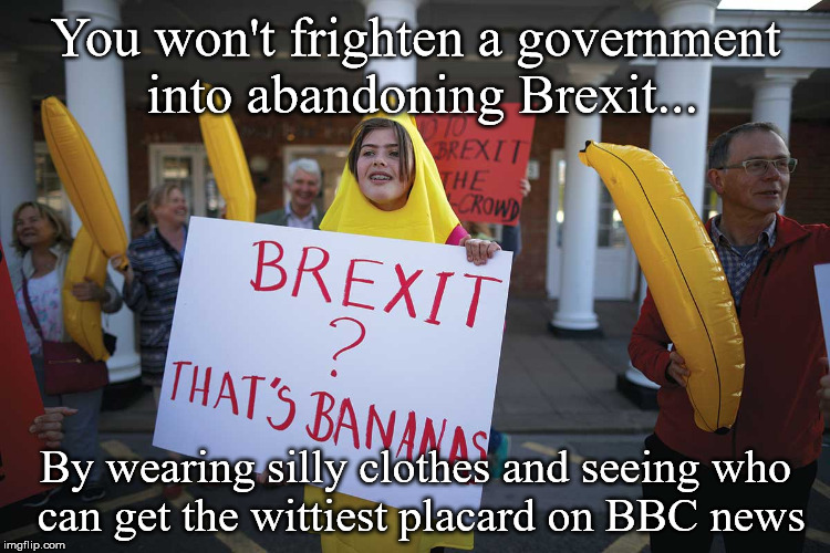 Federast Protester | You won't frighten a government into abandoning Brexit... By wearing silly clothes and seeing who can get the wittiest placard on BBC news | image tagged in brexit,anti-brexit,snowflakes | made w/ Imgflip meme maker