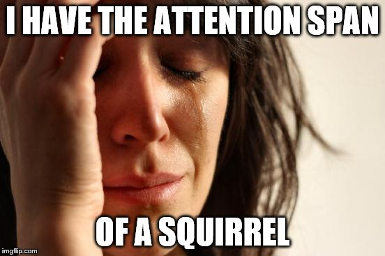 First World Problems Meme | I HAVE THE ATTENTION SPAN OF A SQUIRREL | image tagged in memes,first world problems | made w/ Imgflip meme maker