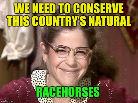 WE NEED TO CONSERVE THIS COUNTRY'S NATURAL RACEHORSES | made w/ Imgflip meme maker