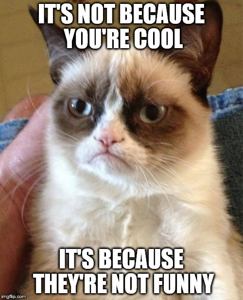 Grumpy Cat Meme | IT'S NOT BECAUSE YOU'RE COOL IT'S BECAUSE THEY'RE NOT FUNNY | image tagged in memes,grumpy cat | made w/ Imgflip meme maker