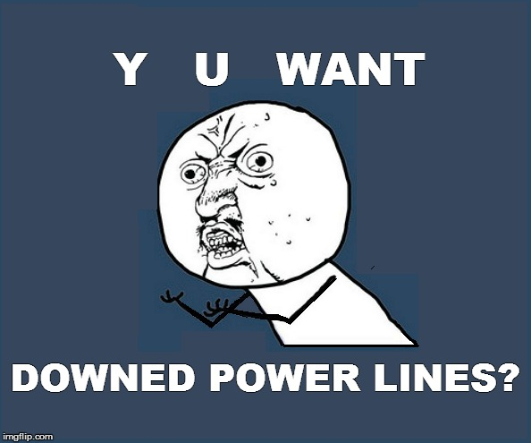 Y   U   WANT DOWNED POWER LINES? | made w/ Imgflip meme maker