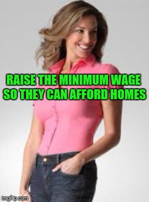 RAISE THE MINIMUM WAGE SO THEY CAN AFFORD HOMES | made w/ Imgflip meme maker