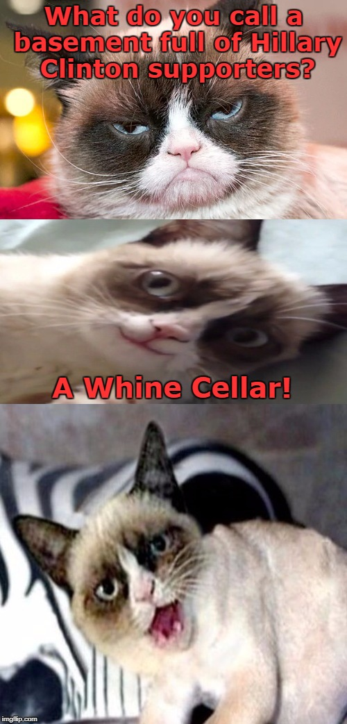 Bad Pun Grumpy Cat | What do you call a basement full of Hillary Clinton supporters? A Whine Cellar! | image tagged in bad pun grumpy cat,hillary clinton,memes,jokes | made w/ Imgflip meme maker