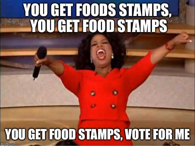 Oprah You Get A Meme | YOU GET FOODS STAMPS, YOU GET FOOD STAMPS YOU GET FOOD STAMPS, VOTE FOR ME | image tagged in memes,oprah you get a | made w/ Imgflip meme maker