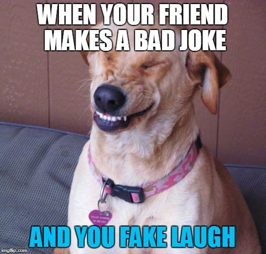 WHEN YOUR FRIEND MAKES A BAD JOKE AND YOU FAKE LAUGH | image tagged in smile dog | made w/ Imgflip meme maker