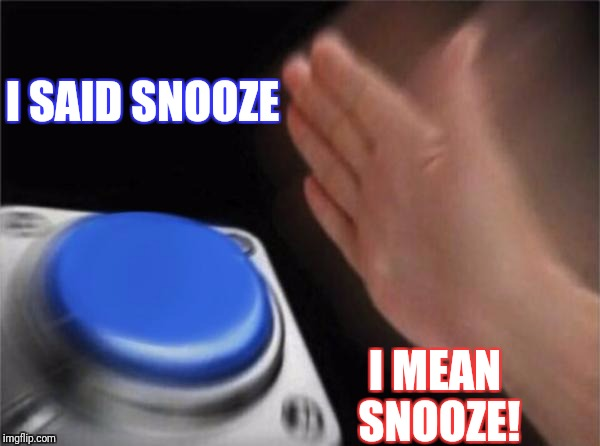 Blank Nut Button Meme | I SAID SNOOZE I MEAN SNOOZE! | image tagged in memes,blank nut button | made w/ Imgflip meme maker