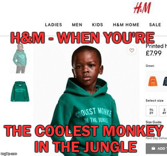 Brilliant! | H&M - WHEN YOU'RE THE COOLEST MONKEY IN THE JUNGLE | image tagged in hm coolest monkey,racist,offended,triggered | made w/ Imgflip meme maker