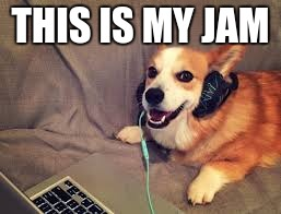 THIS IS MY JAM | image tagged in corgi headphones | made w/ Imgflip meme maker