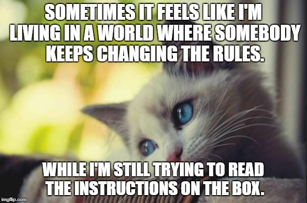 Sad cat | SOMETIMES IT FEELS LIKE I'M LIVING IN A WORLD WHERE SOMEBODY KEEPS CHANGING THE RULES. WHILE I'M STILL TRYING TO READ THE INSTRUCTIONS ON TH | image tagged in sad cat | made w/ Imgflip meme maker