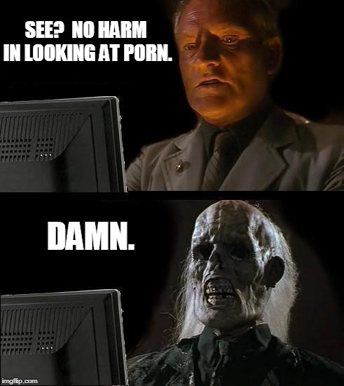 Ill Just Wait Here Meme | SEE?  NO HARM IN LOOKING AT PORN. DAMN. | image tagged in memes,ill just wait here | made w/ Imgflip meme maker