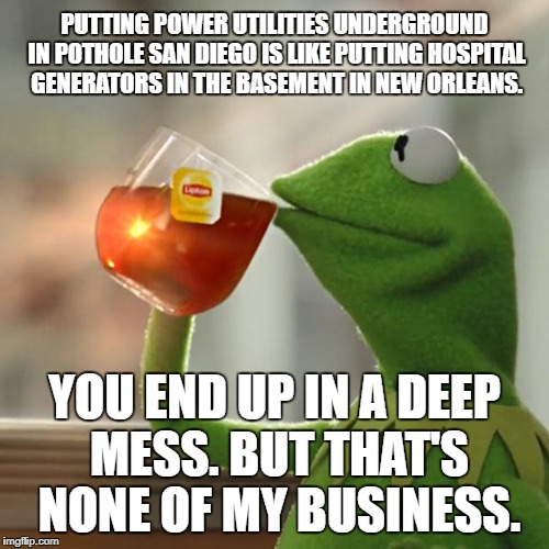 San Diego is in Deep Trouble | PUTTING POWER UTILITIES UNDERGROUND IN POTHOLE SAN DIEGO IS LIKE PUTTING HOSPITAL GENERATORS IN THE BASEMENT IN NEW ORLEANS. YOU END UP IN A | image tagged in memes,but thats none of my business,kermit the frog,san diego,power,new orleans | made w/ Imgflip meme maker