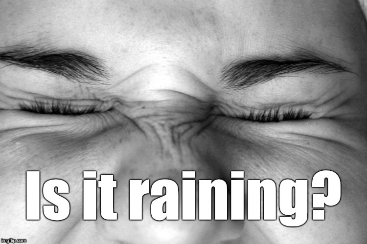 Ewww, I can't watch. | Is it raining? | image tagged in ewww,i can't watch | made w/ Imgflip meme maker