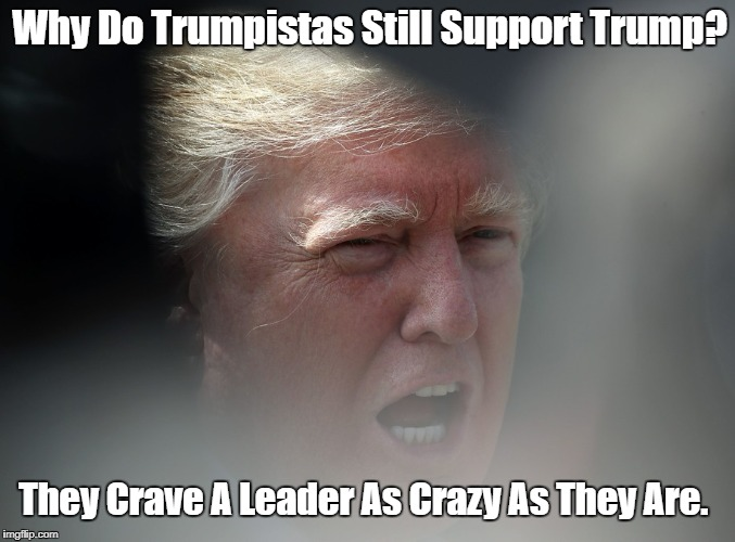 """Why Do Trumpistas Still Support Trump?"" 