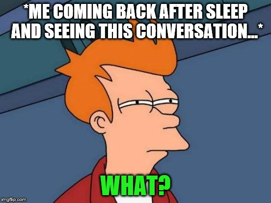 Futurama Fry Meme | *ME COMING BACK AFTER SLEEP AND SEEING THIS CONVERSATION...* WHAT? | image tagged in memes,futurama fry | made w/ Imgflip meme maker