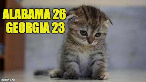 Sad kitten | ALABAMA 26 GEORGIA 23 | image tagged in sad kitten,alabama,georgia,memes | made w/ Imgflip meme maker
