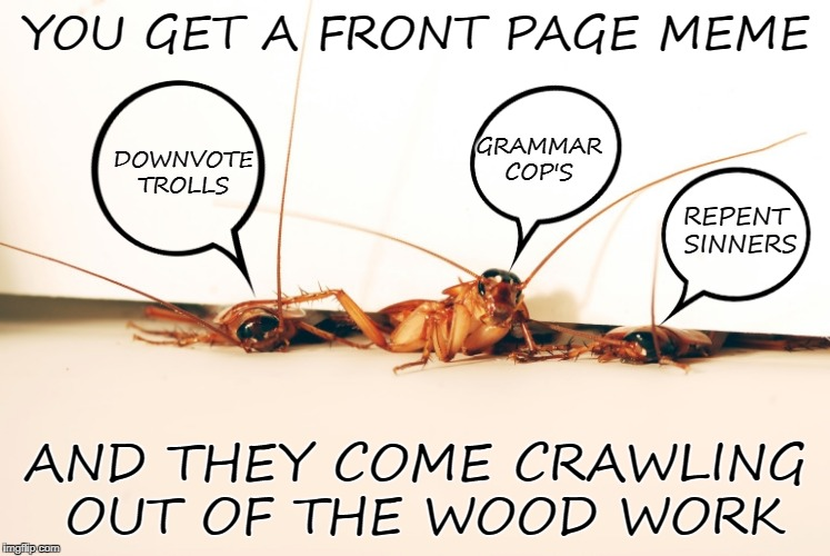 get a front page meme and the come crawling out of the woodwork | YOU GET A FRONT PAGE MEME AND THEY COME CRAWLING OUT OF THE WOOD WORK REPENT SINNERS GRAMMAR COP'S DOWNVOTE TROLLS | image tagged in grammer,trolls | made w/ Imgflip meme maker