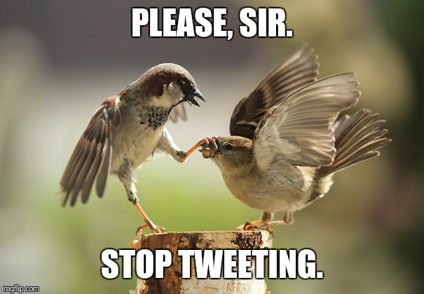 PLEASE, SIR. STOP TWEETING. | image tagged in no more tweeting | made w/ Imgflip meme maker