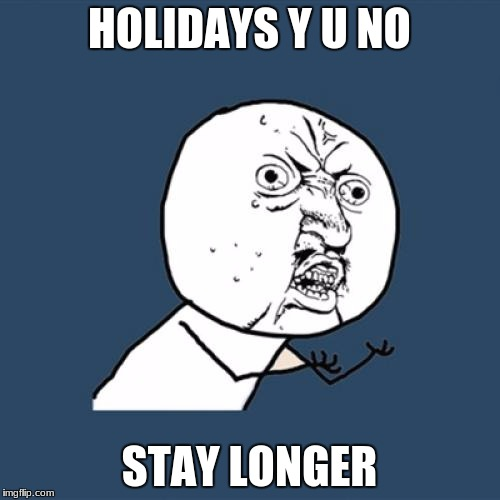 Y U No Meme | HOLIDAYS Y U NO STAY LONGER | image tagged in memes,y u no | made w/ Imgflip meme maker