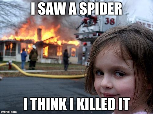 Disaster Girl Meme | I SAW A SPIDER I THINK I KILLED IT | image tagged in memes,disaster girl | made w/ Imgflip meme maker