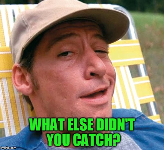 WHAT ELSE DIDN'T YOU CATCH? | made w/ Imgflip meme maker