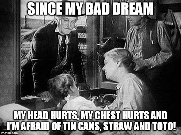 Wizard Of Oz | SINCE MY BAD DREAM MY HEAD HURTS, MY CHEST HURTS AND I'M AFRAID OF TIN CANS, STRAW AND TOTO! | image tagged in wizard of oz | made w/ Imgflip meme maker