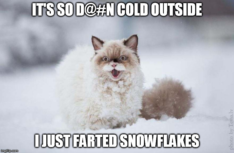 IT'S SO D@#N COLD OUTSIDE I JUST FARTED SNOWFLAKES | made w/ Imgflip meme maker