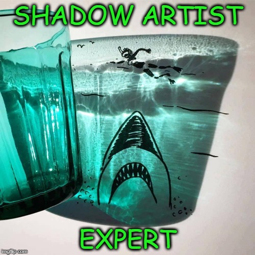 shadow artist | SHADOW ARTIST EXPERT | image tagged in shadow art,art | made w/ Imgflip meme maker