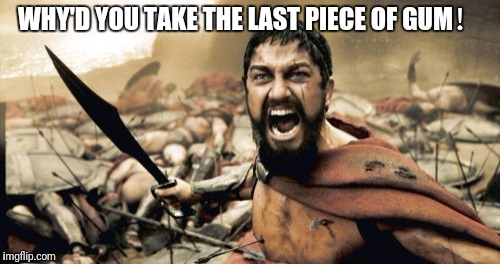 Sparta Leonidas Meme | WHY'D YOU TAKE THE LAST PIECE OF GUM! | image tagged in memes,sparta leonidas | made w/ Imgflip meme maker