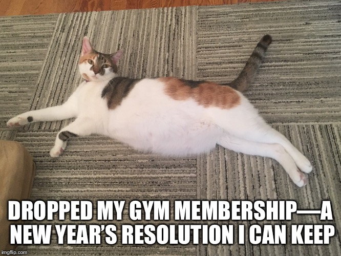 Nantrana | DROPPED MY GYM MEMBERSHIP—A NEW YEAR'S RESOLUTION I CAN KEEP | image tagged in nantrana | made w/ Imgflip meme maker