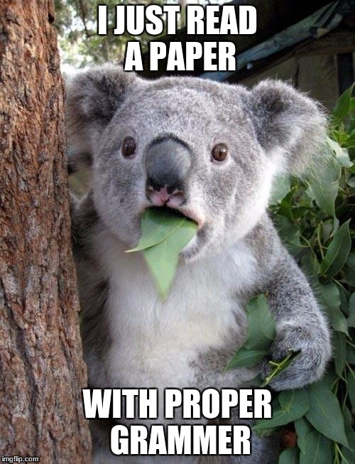 Suprised Koala | I JUST READ A PAPER WITH PROPER GRAMMER | image tagged in suprised koala | made w/ Imgflip meme maker