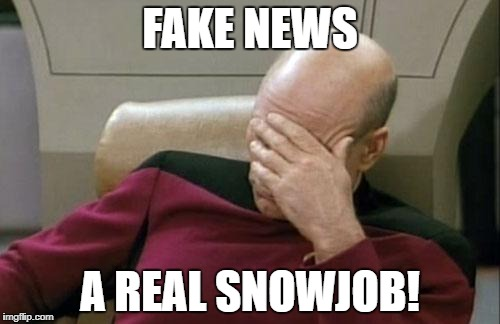 Captain Picard Facepalm Meme | FAKE NEWS A REAL SNOWJOB! | image tagged in memes,captain picard facepalm | made w/ Imgflip meme maker