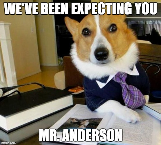 Lawyer Corgi Dog | WE'VE BEEN EXPECTING YOU MR. ANDERSON | image tagged in lawyer corgi dog | made w/ Imgflip meme maker