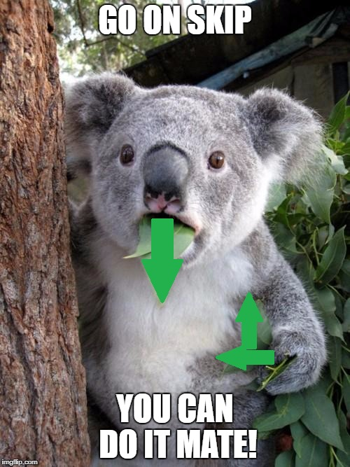 GO ON SKIP YOU CAN DO IT MATE! | made w/ Imgflip meme maker