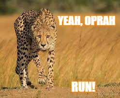 YEAH, OPRAH RUN! | image tagged in run,stalk,oprah | made w/ Imgflip meme maker