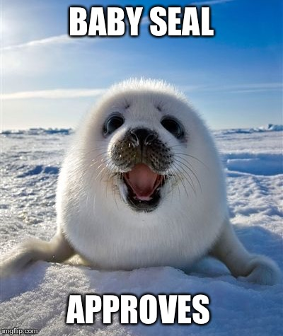 BABY SEAL APPROVES | made w/ Imgflip meme maker