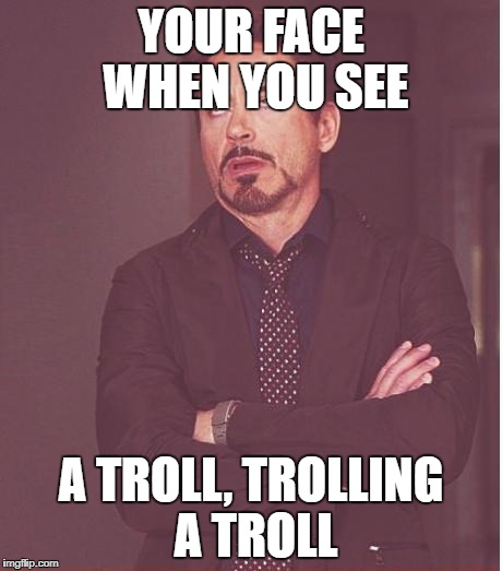 Face You Make Robert Downey Jr Meme | YOUR FACE WHEN YOU SEE A TROLL, TROLLING A TROLL | image tagged in memes,face you make robert downey jr | made w/ Imgflip meme maker
