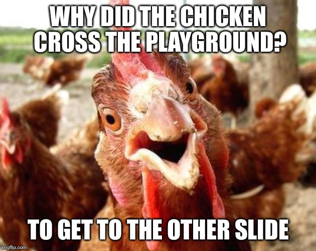 WHY DID THE CHICKEN CROSS THE PLAYGROUND? TO GET TO THE OTHER SLIDE | image tagged in memes,anti joke chicken | made w/ Imgflip meme maker