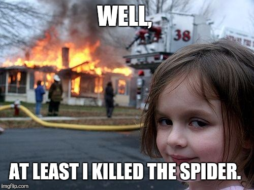 Disaster Girl |  WELL, AT LEAST I KILLED THE SPIDER. | image tagged in memes,disaster girl | made w/ Imgflip meme maker
