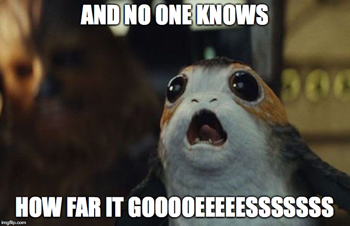 AND NO ONE KNOWS HOW FAR IT GOOOOEEEEESSSSSSS | image tagged in star wars porg | made w/ Imgflip meme maker