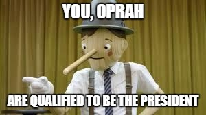 YOU, OPRAH ARE QUALIFIED TO BE THE PRESIDENT | image tagged in liar | made w/ Imgflip meme maker