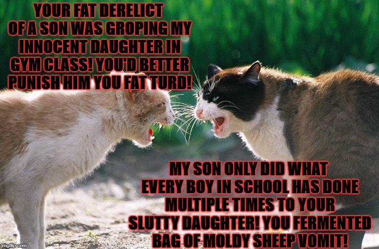 YOUR FAT DERELICT OF A SON WAS GROPING MY INNOCENT DAUGHTER IN GYM CLASS! YOU'D BETTER PUNISH HIM YOU FAT TURD! MY SON ONLY DID WHAT EVERY B | image tagged in cat fight | made w/ Imgflip meme maker