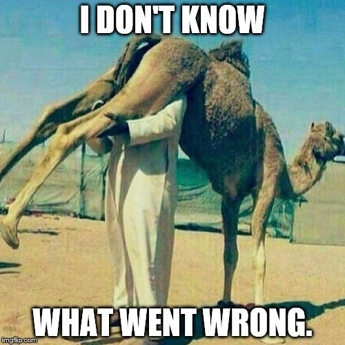 I DON'T KNOW WHAT WENT WRONG. | image tagged in muslim | made w/ Imgflip meme maker