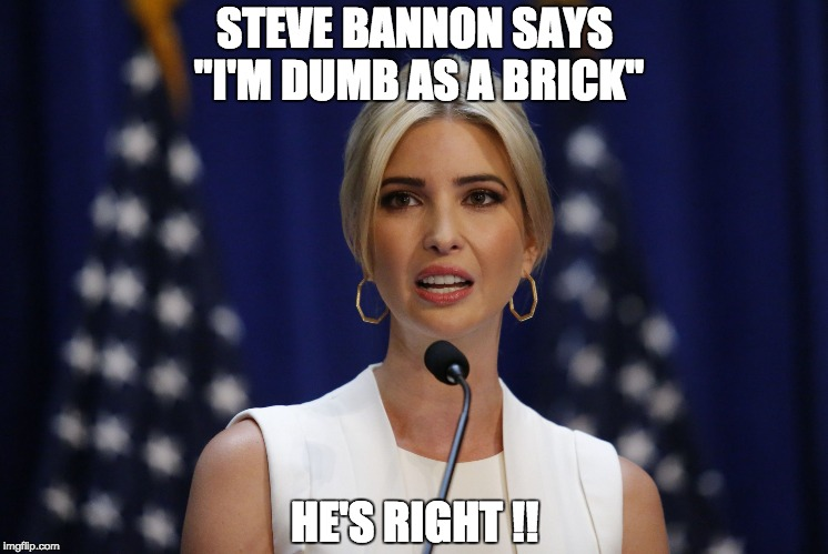 "STEVE BANNON SAYS ""I'M DUMB AS A BRICK"" HE'S RIGHT !! 